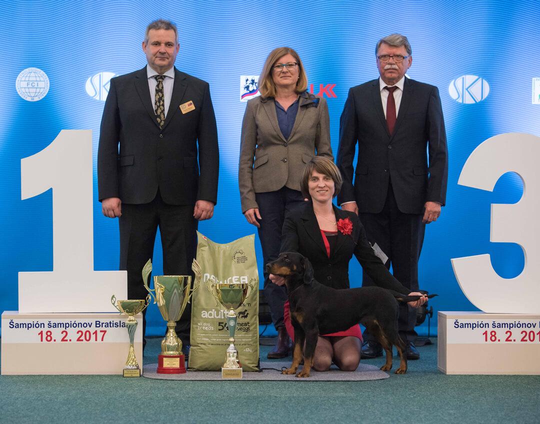 BEST IN SHOW Slovak Hound CORALINA Z JARKINHO ÚDOLIA, Gorelčíková Jaroslava R. BEST IN SHOW